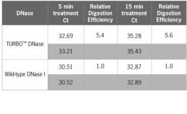 TURBO™ DNase is 5X more effective than wild type DNase I in removing DNA contamination prior to PCR.