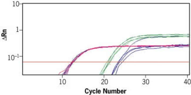 Cells-to-Signal™ is Ideal for Measuring siRNA Induced Knockdown