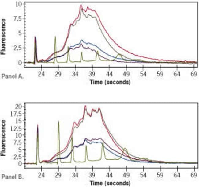 Consistent electropherograms of Amino Allyl aRNA–amplified by manual or robotic Amino Allyl MessageAmp™ II-96 procedure.
