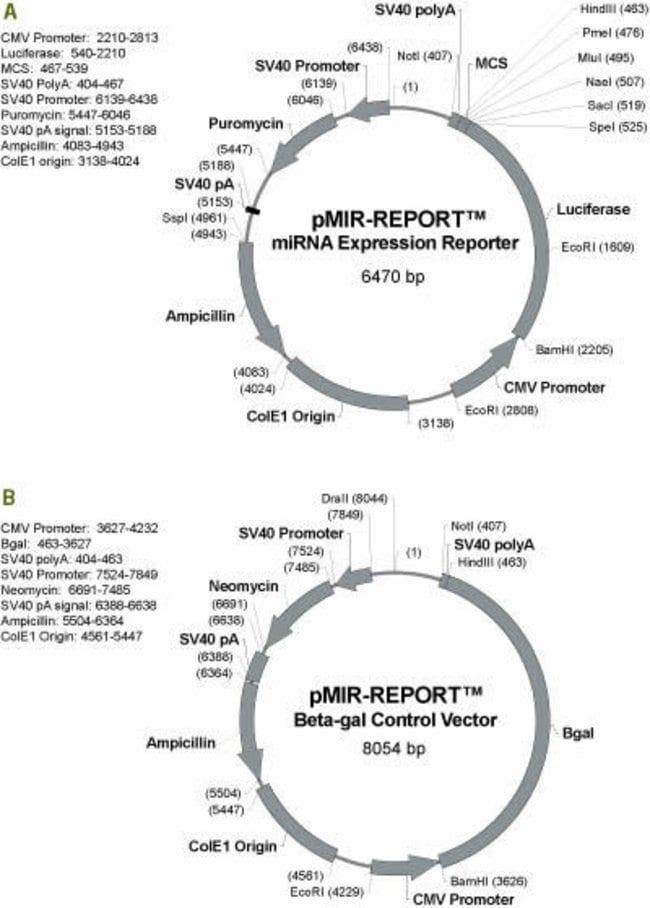 Vectors Comprising the pMIR-REPORT™ miRNA Expression Reporter Vector System