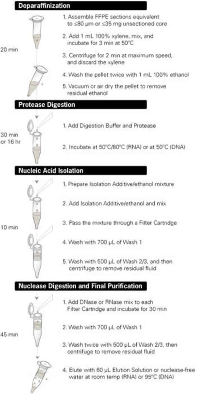 Overview of the RecoverAll™ Total Nucleic Acid Isolation Kit procedure