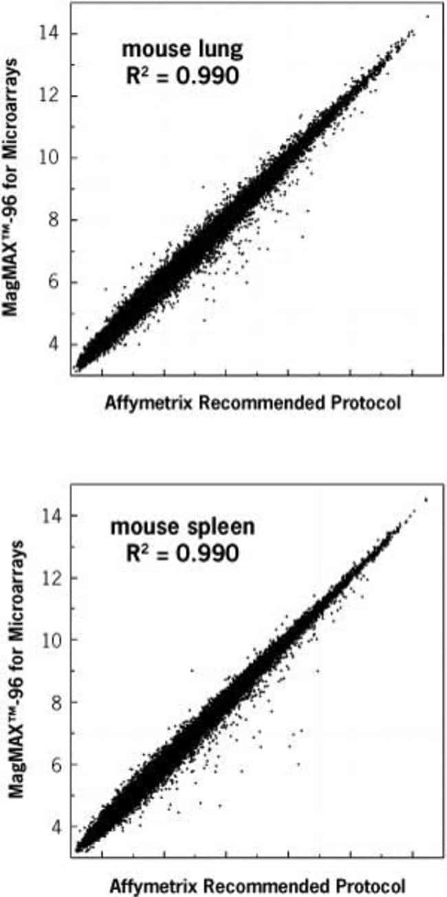 Total RNA was isolated from frozen mouse lung and spleen using the MagMAX™-96 for Microarrays Kit or the Affymetrix-recommended protocol. 1 µg of RNA from each sample was amplified using the Mes