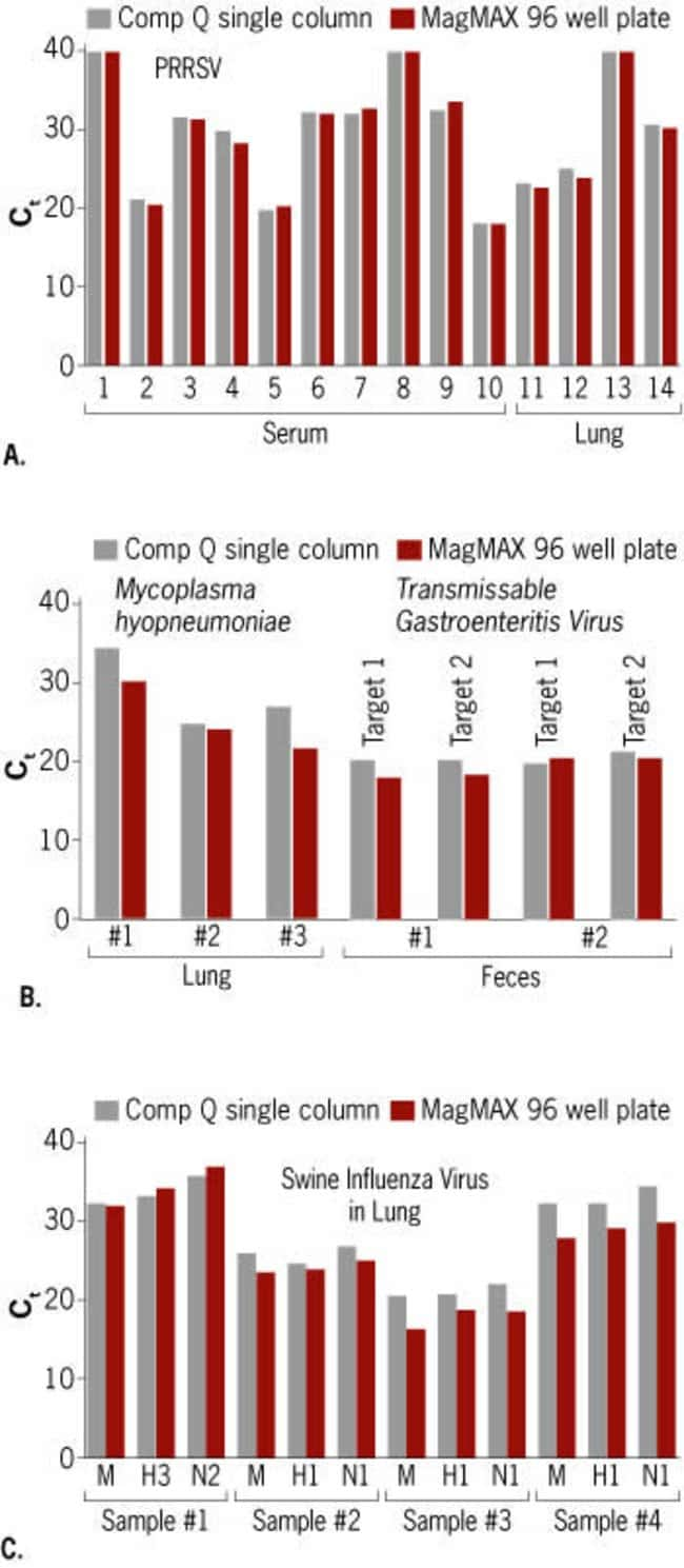 The efficiency of swine associated pathogen nucleic acid isolation was compared using the MagMAX kit and Company Q filter columns. (A) Isolation of Porcine Reproductive and Respiratory Syndrome (PRRS)