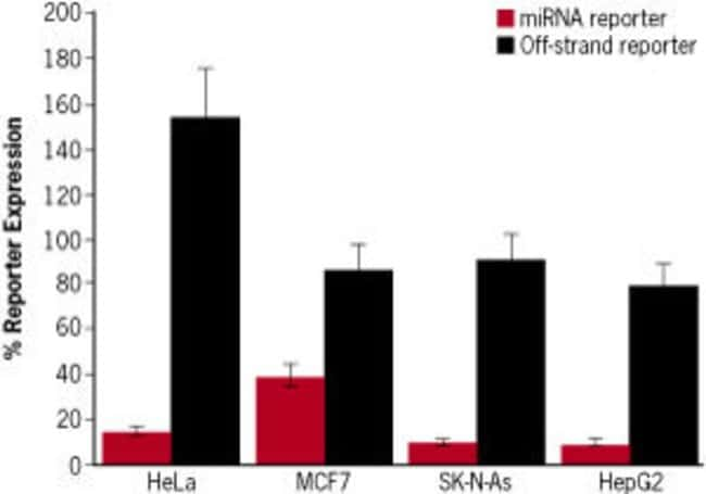 Pre-mir™ miRNA precursors are designed for activation of the correct strand.