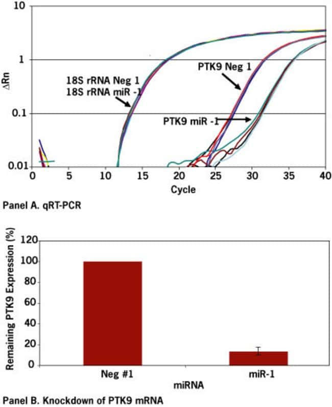 Quantitation of PTK9 mRNA down regulation.
