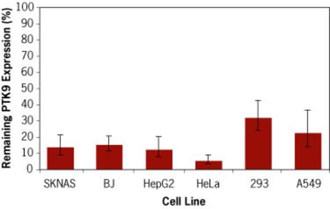 Pre-miR™ miRNA precursor–mediated knockdown of PTK9 mRNA in various human cell lines.