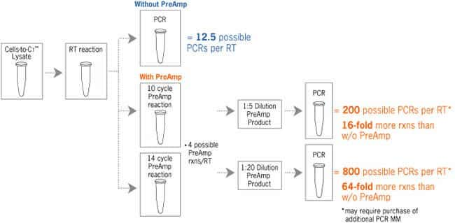 Pre-amplification Extends Limited Sample Amounts