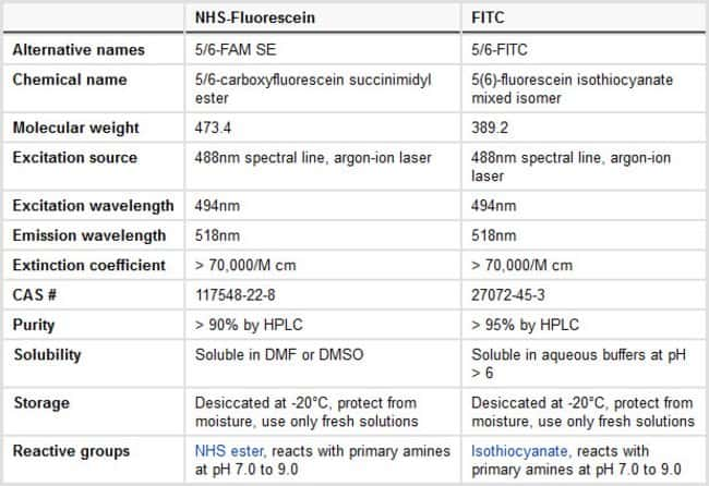 Comparison of NHS-Fluorescein and FITC