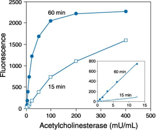 Detection of electric eel acetylcholinesterase activity using the Amplex® Red Acetylcholine⁄Acetylcholinesterase Assay Kit.