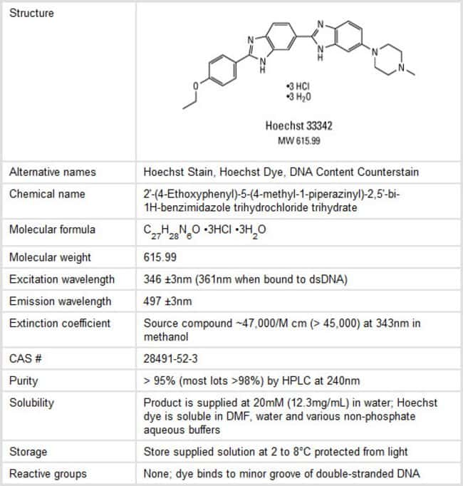 Properties of Hoechst Fluorescent Dye