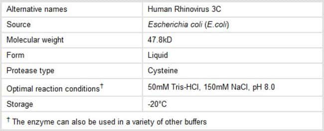 Properties of Thermo Scientific Pierce HRV 3C Protease
