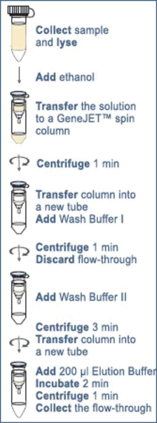 Overview of purification procedure