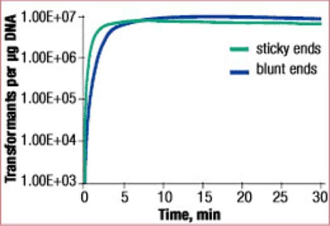 Ligation of sticky-, blunt-end DNA fragments with the Rapid DNA Ligation Kit