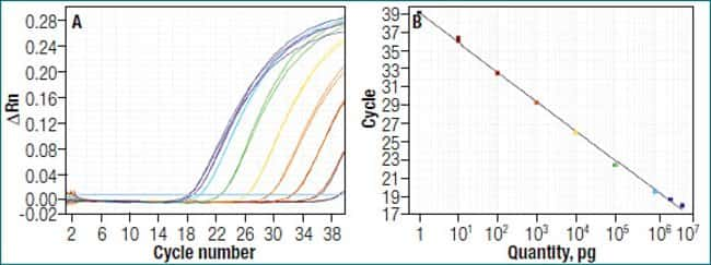 Highly sensitive two step RT-qPCR