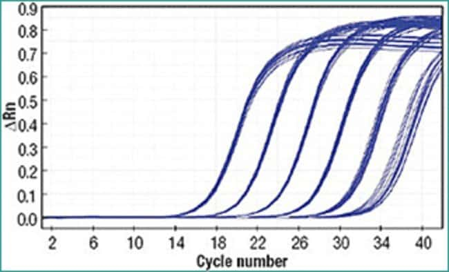 Reproducible RT-qPCR results using Maxima First Strand cDNA Synthesis Kit for RT-qPCR
