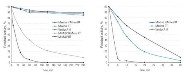 High thermostability of Maxima and Maxima H Minus Reverse Transcriptases