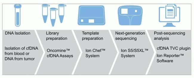Oncomine Lung cfDNA Assay workflow