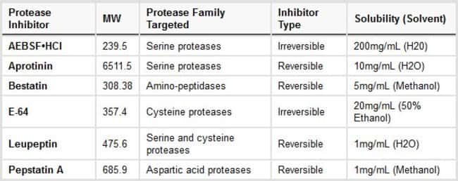 General properties of protease inhibitors