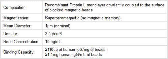 Characteristics of Thermo Scientific Pierce Protein L Magnetic Beads