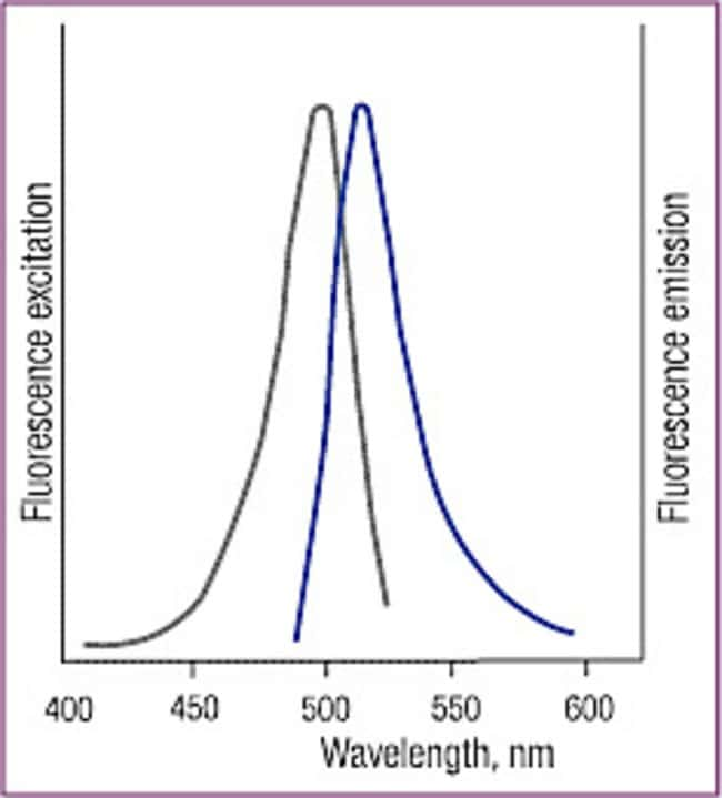 Normalized excitation-emission spectra of Fluorescein-12-dUTP
