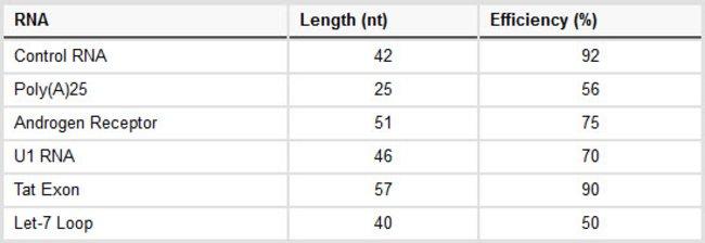 Ligation efficiency of RNA desthiobiotinylation