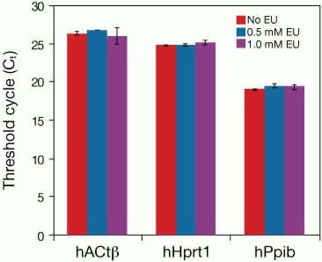 Housekeeping genes are unaffected in cells incubated with EU. RNA was isolated using TRIzol® LS reagent (Cat. No. 102906-010) from NIH3T3 cells fed with EU. RNA concentrations were determined for each sample, and then 250 ng of RNA and specific primer sets for hACtß, hHprt1, and hPpib were used in a reaction volume of 50 µL to perform one-step qPCR using the SuperScript® III Platinum® SYBR® Green One-Step qRT-PCR Kit (Cat. No.11736-051) and the Mx3000P system (Stratagene).