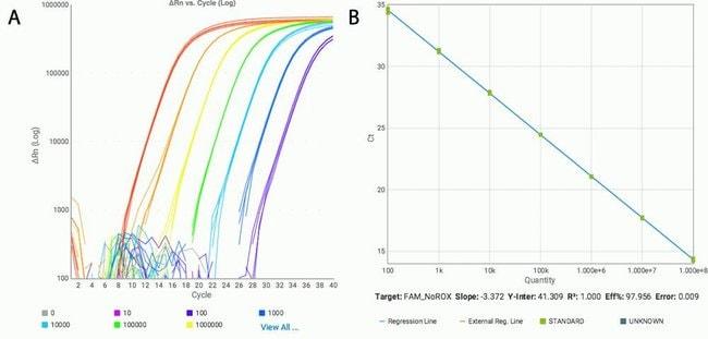 Figure 2. Excellent dynamic range of TaqPath 1-Step Multiplex Master Mix (No ROX)
