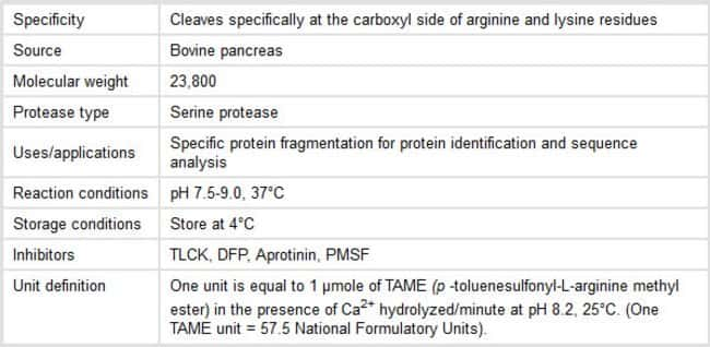 Properties of Trypsin Protease