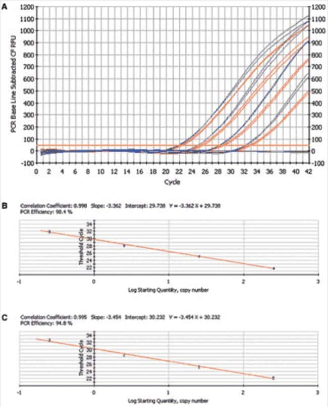 Alpha-Tubulin amplification using ABsolute qPCR ROX Mix vs product from Competitor A