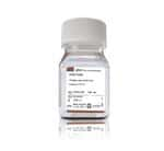 Geneticin™ Selective Antibiotic (G418 Sulfate) (50 mg/mL)