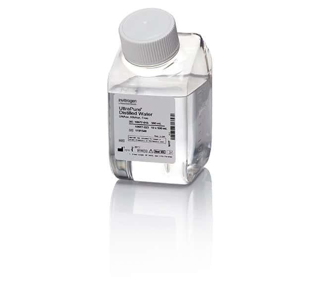 UltraPure™ DNase/RNase-Free Distilled Water