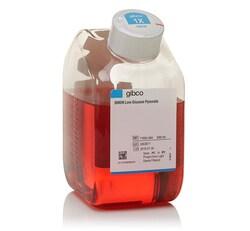DMEM, low glucose, pyruvate