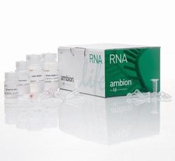 PureLink™ RNA Mini Kit