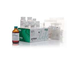 TRIzol™ Plus RNA Purification Kit