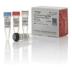 AccuPrime™ <i>Taq</i> DNA Polymerase, high fidelity
