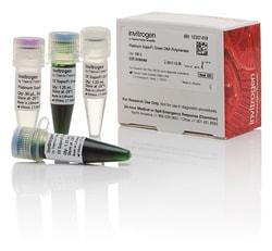 Platinum™ SuperFi™ Green DNA Polymerase