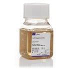 B-27™ Supplement (50X), minus vitamin A