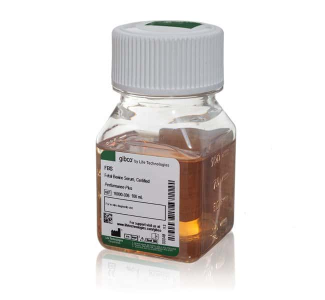 Fetal Bovine Serum, certified, US origin