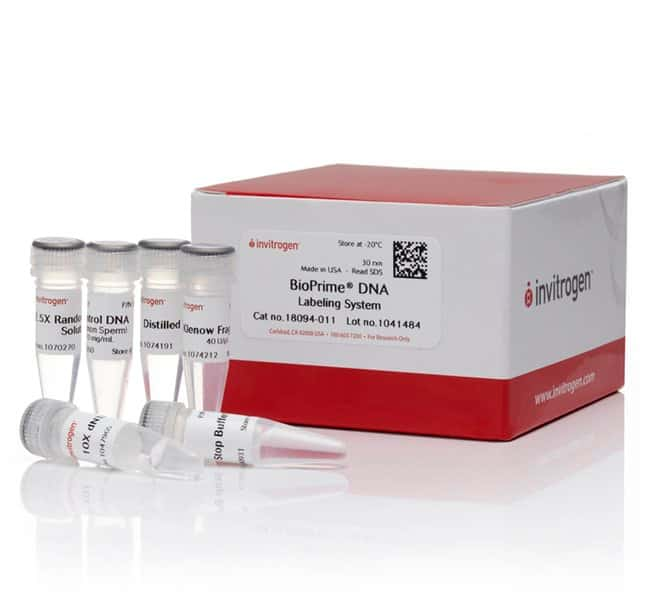BioPrime™ DNA Labeling System