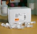 LightShift™ Chemiluminescent EMSA Kit