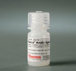 Pierce™ Avidin Agarose