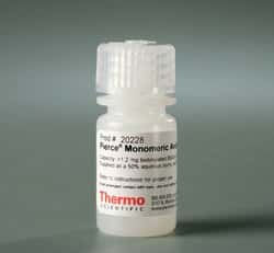 Pierce™ Monomeric Avidin Agarose