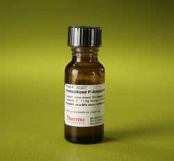 Pierce™ p-Aminophenyl Phosphoryl Choline Agarose