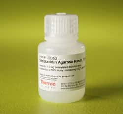 Pierce™ Streptavidin Agarose
