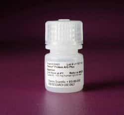 Pierce™ Protein A/G Plus Agarose