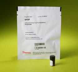 SPDP (succinimidyl 3-(2-pyridyldithio)propionate)