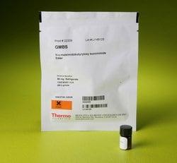 GMBS (N-γ-maleimidobutyryl-oxysuccinimide ester)
