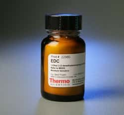 EDC (1-ethyl-3-(3-dimethylaminopropyl)carbodiimide hydrochloride)