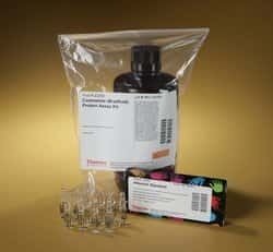 Pierce™ Coomassie (Bradford) Protein Assay Kit
