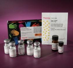 Pierce™ Colorimetric Protease Assay Kit